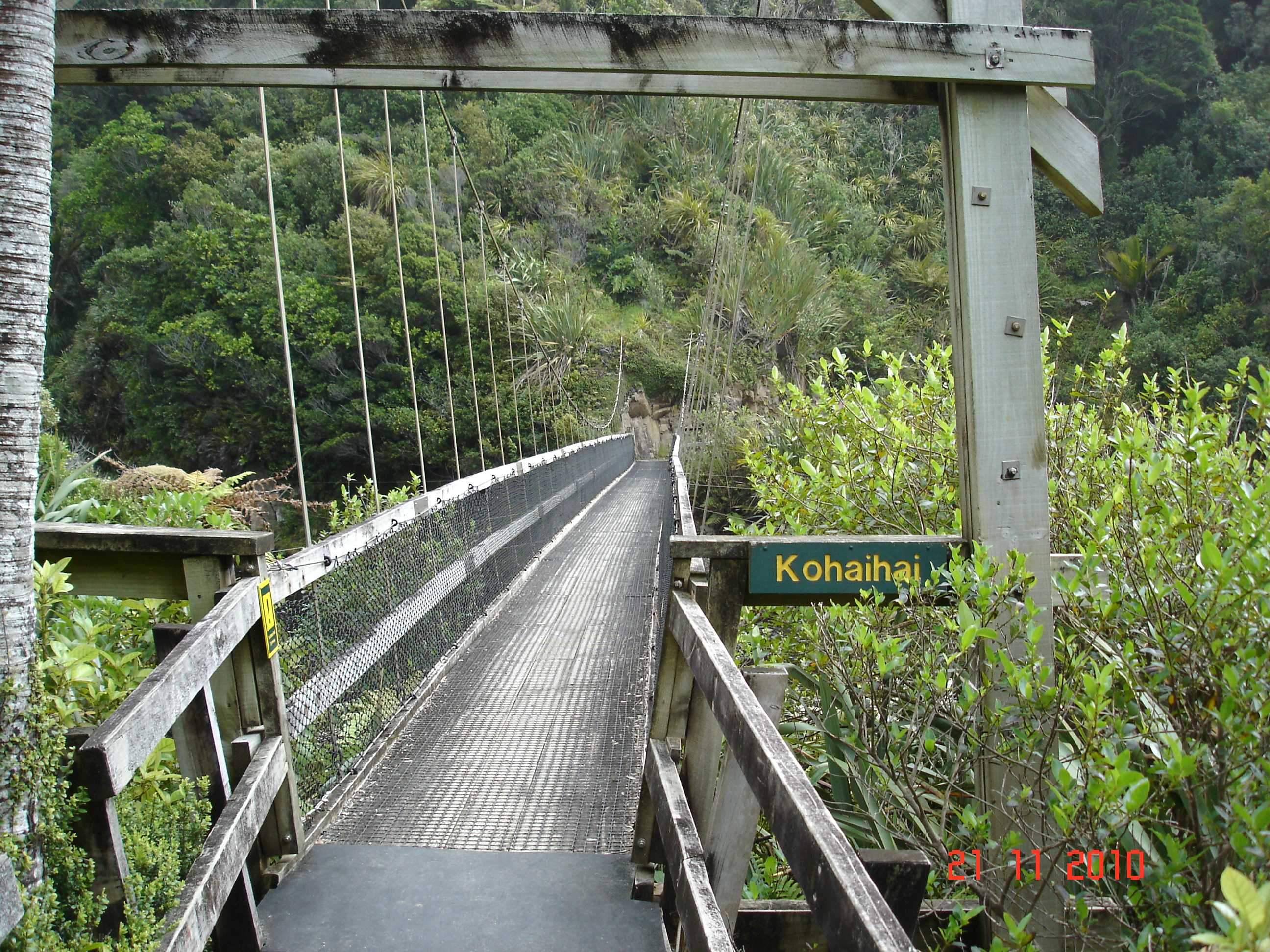 Heaphy Track-26