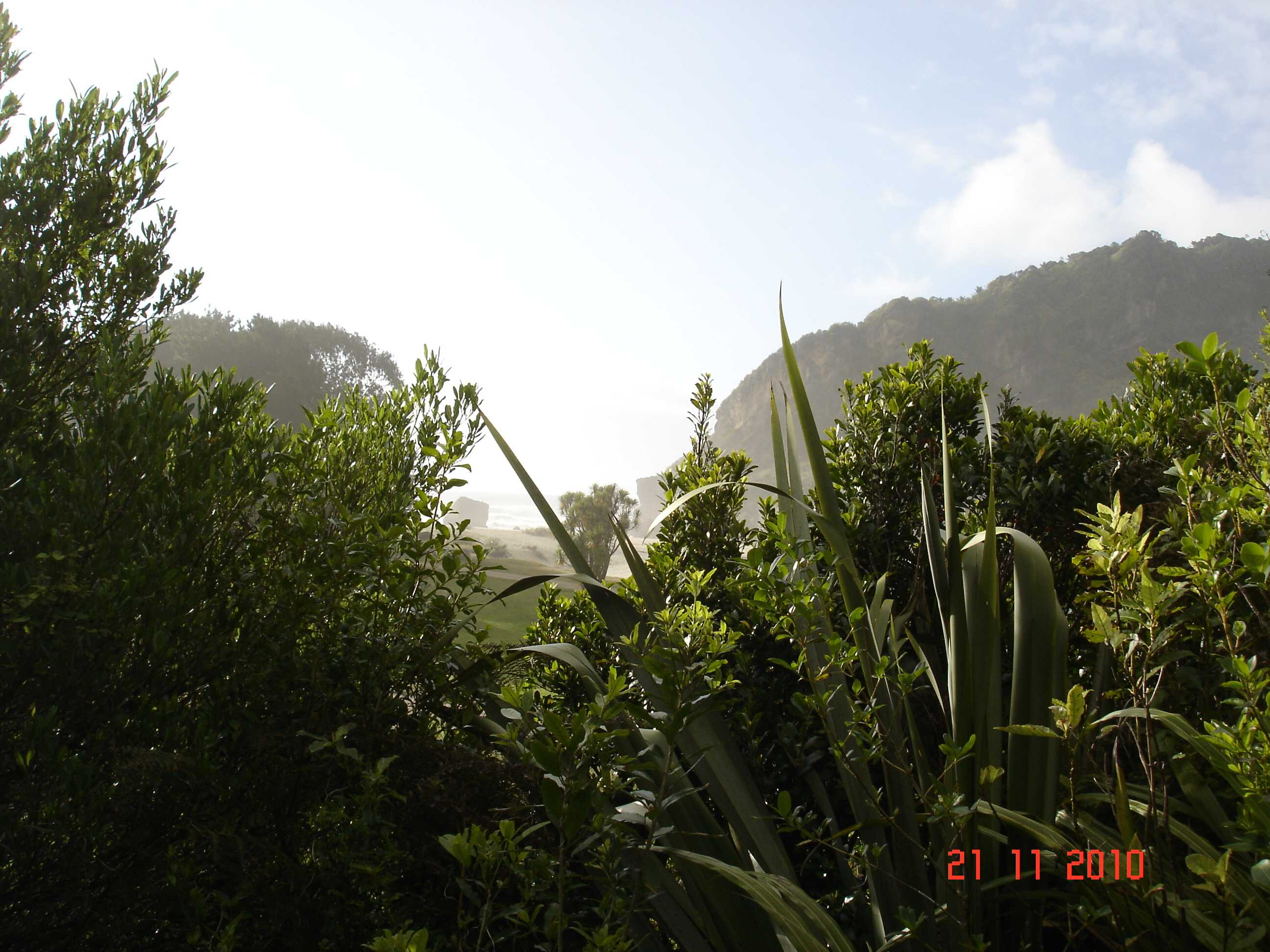 Heaphy Track-32